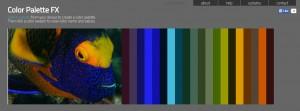 colour pallete - Copy